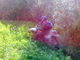 Медведь Балу учиться переворачиваться на мотоцикле